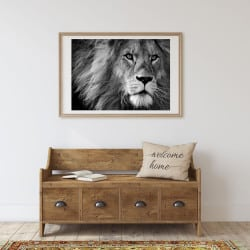 POSTER LION (POST0034)