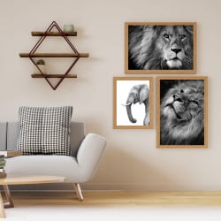 POSTER LION CRINIERE (POST0035)