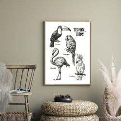 POSTER TROPICAL BRIDS (POST0040)