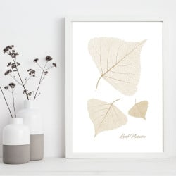 POSTER LEAF NATURE (POST0142)