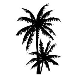 "STICKERS PLANTE ""PALMIERS ""(B0065)"