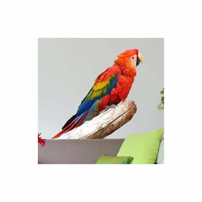plusieurs dimensions Sticker animal Perroquet réf 110