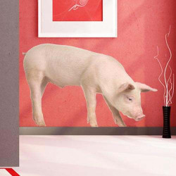 STICKER ANIMAUX FERME : COCHON (B0199)