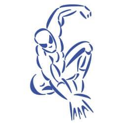STICKERS SPIDER (E0181)