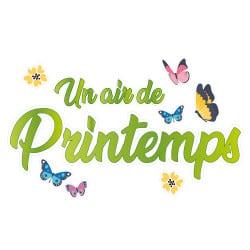 STICKER POUR VITRINE COMME UN AIR DE PRINTEMPS (PRINTEMPS008)